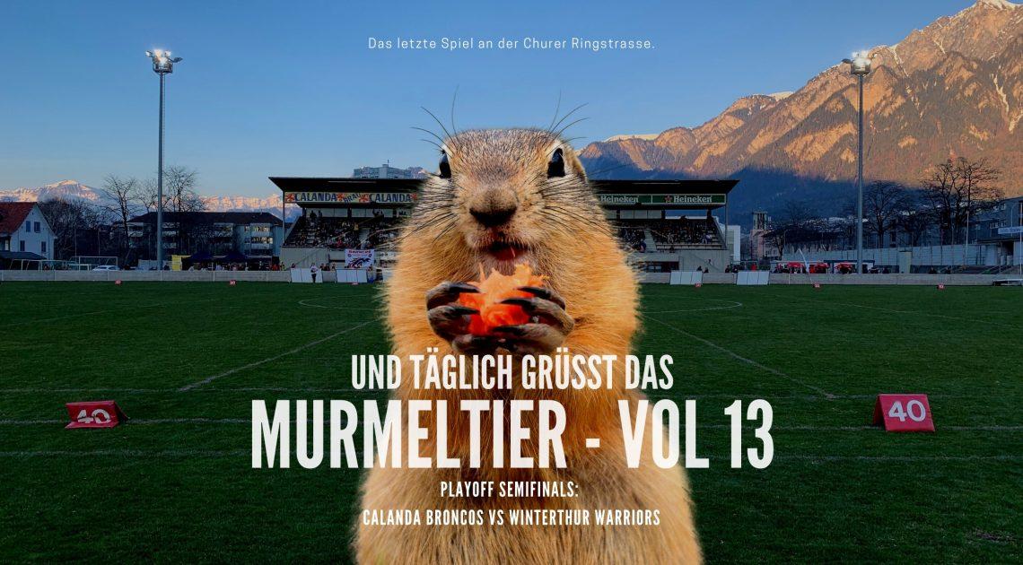 murmeli blog-2